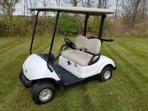 golf cart rentals dayton tn